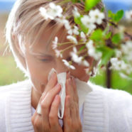 Got Seasonal Allergies? Fix Your Gut
